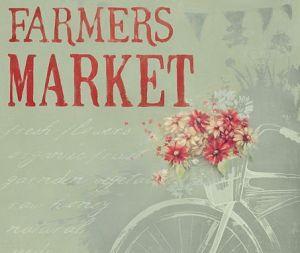 farmers-market-bike-1